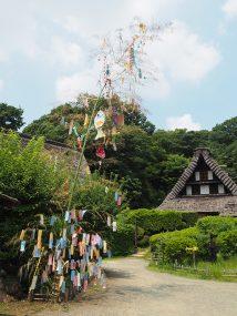 annual exhibition tanabata